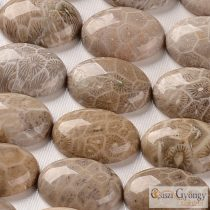 Natural Fossil Gemstone Cabochon - 1 pc. - size: 25x18 mm