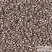 1460 - Silver Lined Op. Cinnamon - 5 g - 11/0 Miyuki Delica Perlen