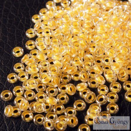 Luminous Neon Tangerine - 5 g - 8/0 Demi Round (801)