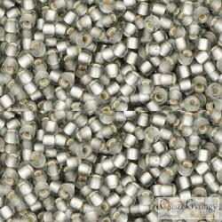 Silver Lined Frosted Black Diamond - 10 g - 11/0 Toho japán kásagyöngy (29AF)
