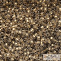 Frosted Gold Lined Crystal - 5 g - 15/0 Toho Rocailles (989F)
