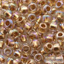 Gold Lined Rainbow Crystal - 10 g - 6/0 Toho Rocailles (994)
