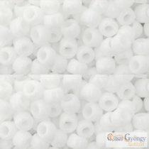 Opaque White - 10 g - 6/0 Toho Rocailles (41)