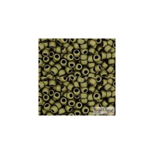 Matte Color Dark Olive - 10 g - 8/0 Toho japán kásagyöngy (617)
