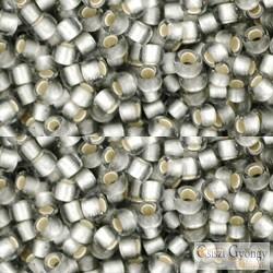 Silver Lined Frost. Black Diamond - 10 g - 8/0 Toho japán kásagyöngy (29AF)